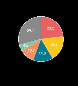 Breakdown of China beer market