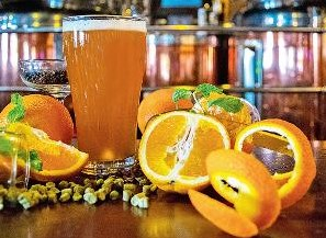 India  Cheers to fruit beers! | Journal Beer — beer markets analysis